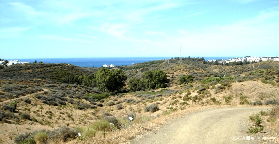 Cerro Piña DA